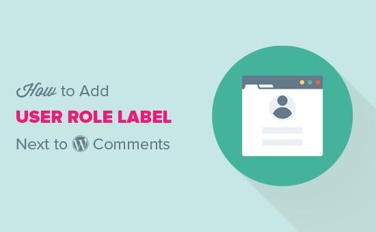Adicionar função de usuário ao lado de comentários no WordPress
